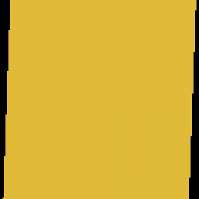 Grain de Sénevé - Grain - 2