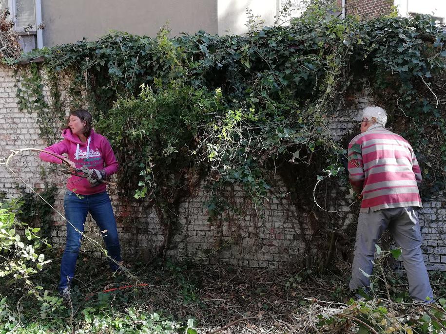 Nettoyage du jardin de la maison de la Rue Lartigue