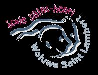 Logo ecole saint henri
